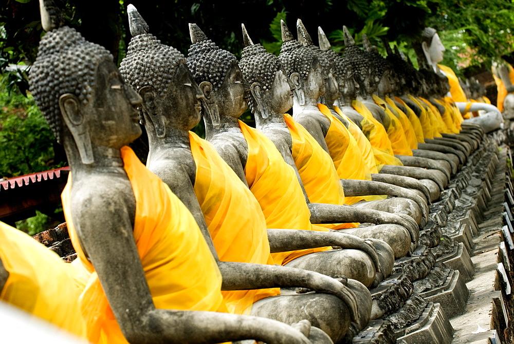 Buddha statues, Ayuthaya, Thailand, Southeast Asia, Asia - 784-235