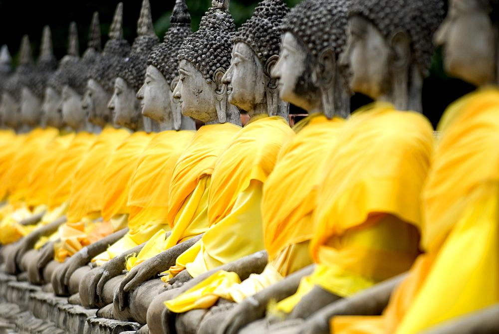 Buddha statues, Ayuthaya, Thailand, Southeast Asia, Asia - 784-236