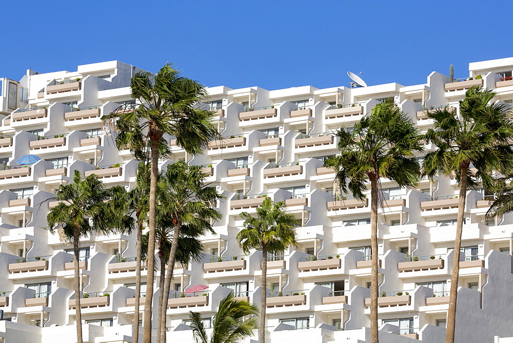 Apartment block and palm trees, overlooking Playa del Matorral, at Morro Jable, on the volcanic island of Fuerteventura, Canary Islands, Spain, Atlantic, Europe - 785-2257