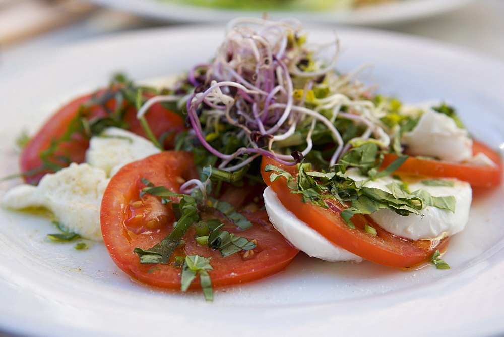 Tomato and Mozarella salad, Brussels, Belgium, Europe