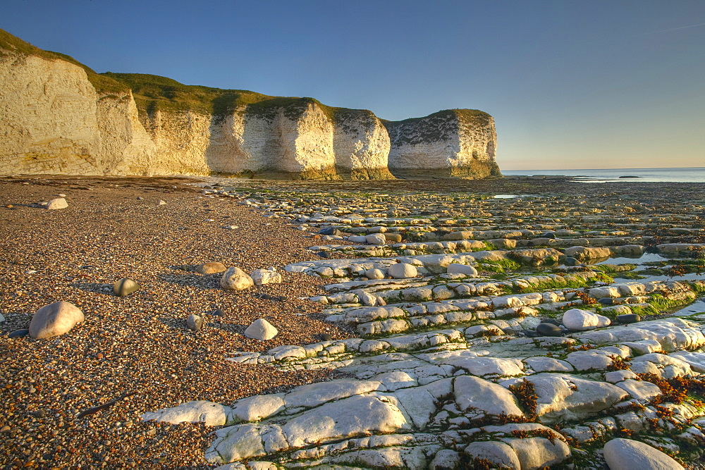 Selwicks Bay, Flamborough, East Yorkshire, England, United Kingdom, Europe - 790-16