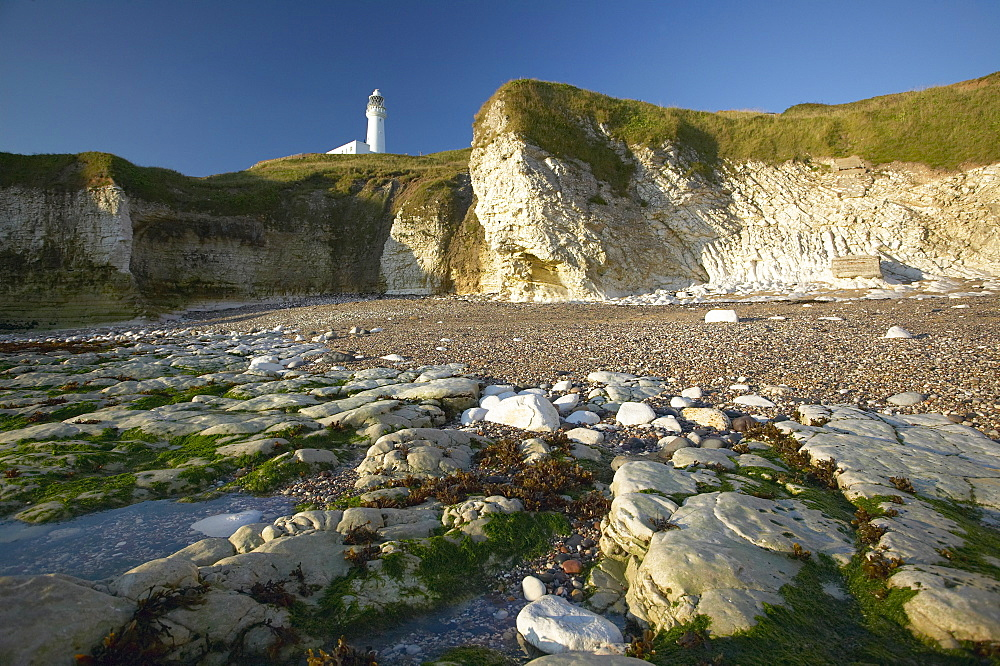 Selwicks Bay, Flamborough, East Yorkshire, England, United Kingdom, Europe - 790-17