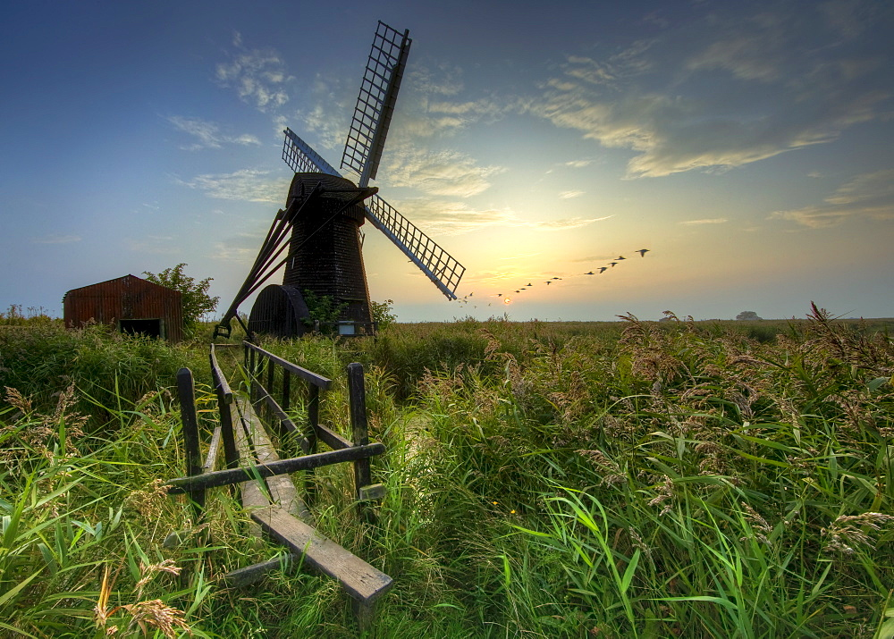 Autumn dusk at Herringfleet, Suffolk, England, United Kingdom, Europe - 790-45