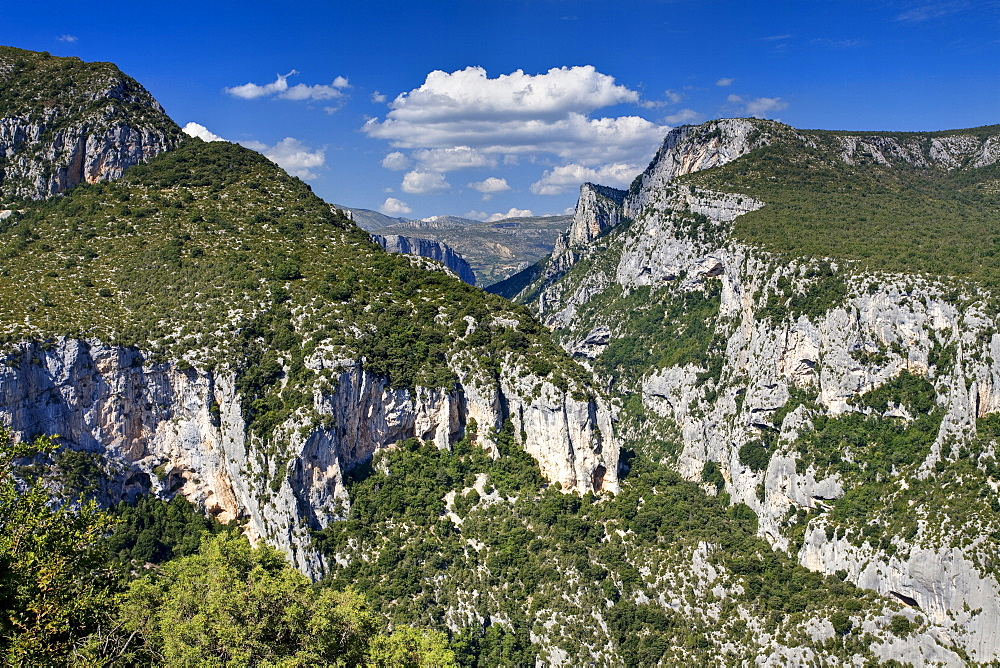 Gorge Du Verdon, Provence, France, Europe - 790-52