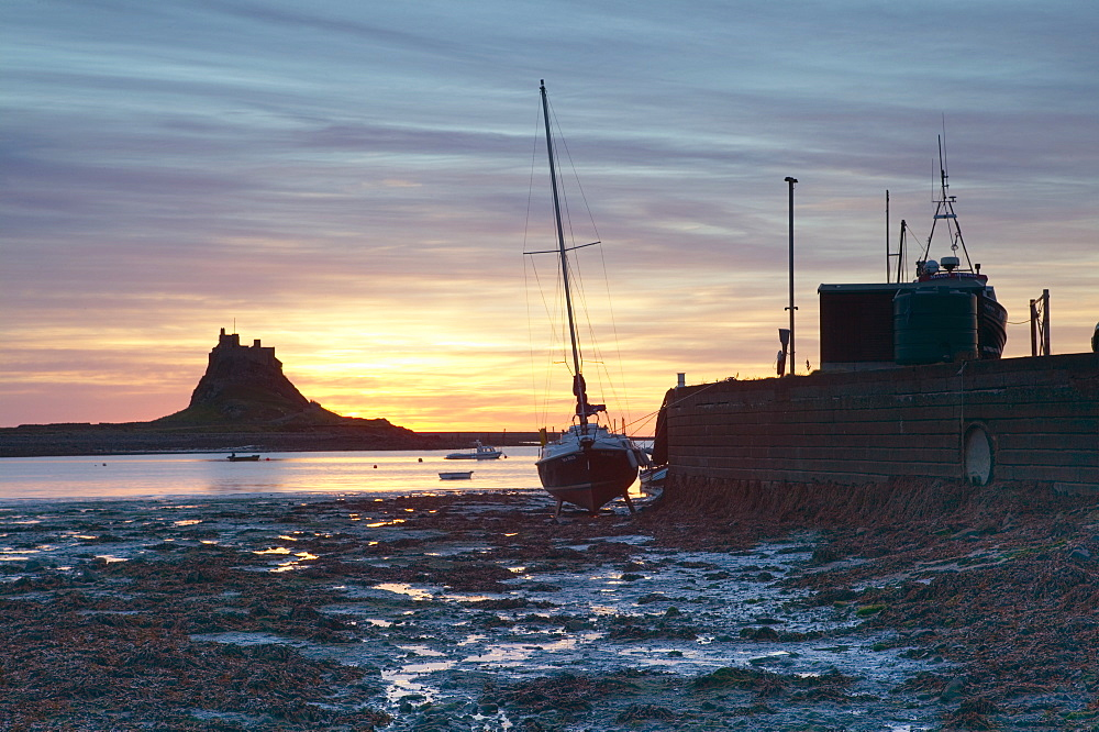 Sunrise at Lindisfarne, Holy Island, Northumberland, England, United Kingdom, Europe - 790-8