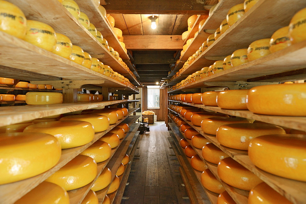 Cheese warehouse, Zuiderzee open air museum, Lake Ijssel, Enkhuizen, North Holland, Netherlands, Europe - 792-767