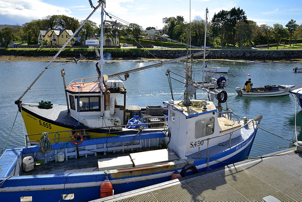 Fishing boats, Castletown, Castletownbere, Beara Peninsula, Wild Atlantic Way, County Cork, Munster, Republic of Ireland, Europe - 792-837