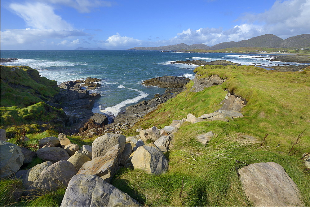 Ballydonegan Bay, Ring of Beara, Beara Peninsular, Wild Atlantic Way, County Cork, Munster, Republic of Ireland, Europe - 792-841