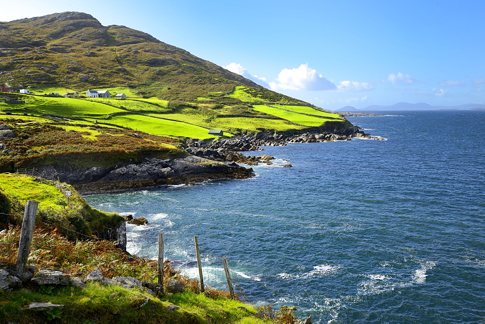 Coastal View, Ring of Beara, Beara Peninsular, Wild Atlantic Way, County Cork, Munster, Republic of Ireland, Europe - 792-843