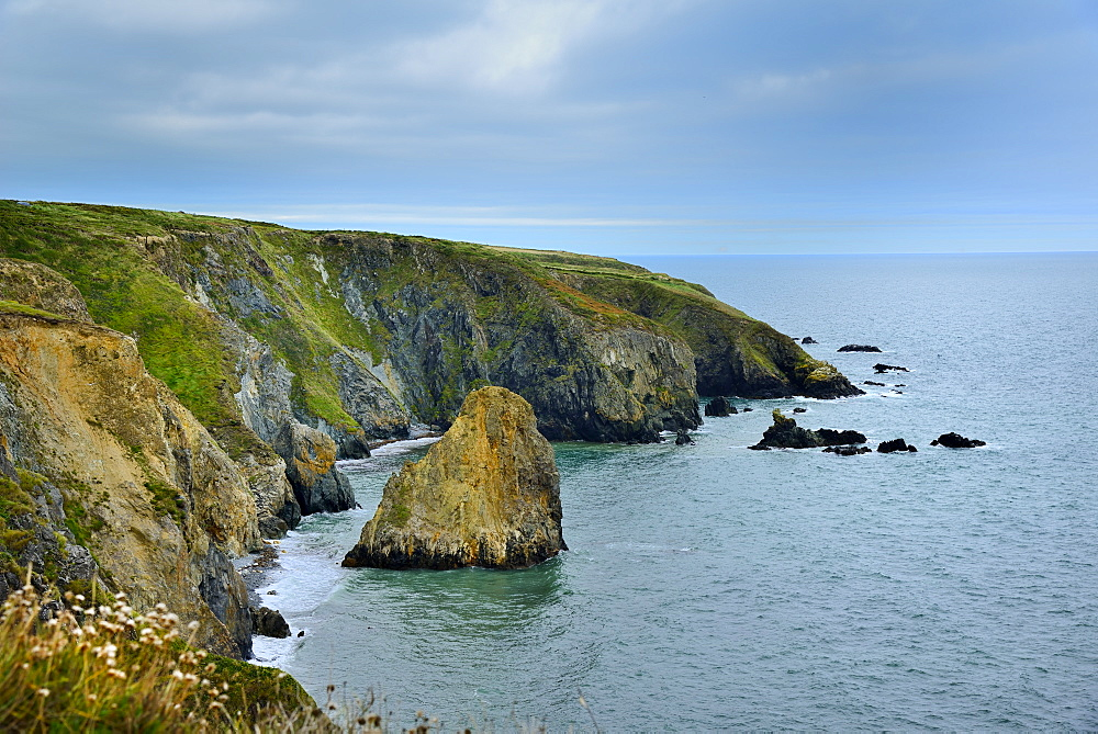 Coastal Cliffs, Copper Coast Drive, County Waterford, Munster, Republic of Ireland, Europe - 792-857