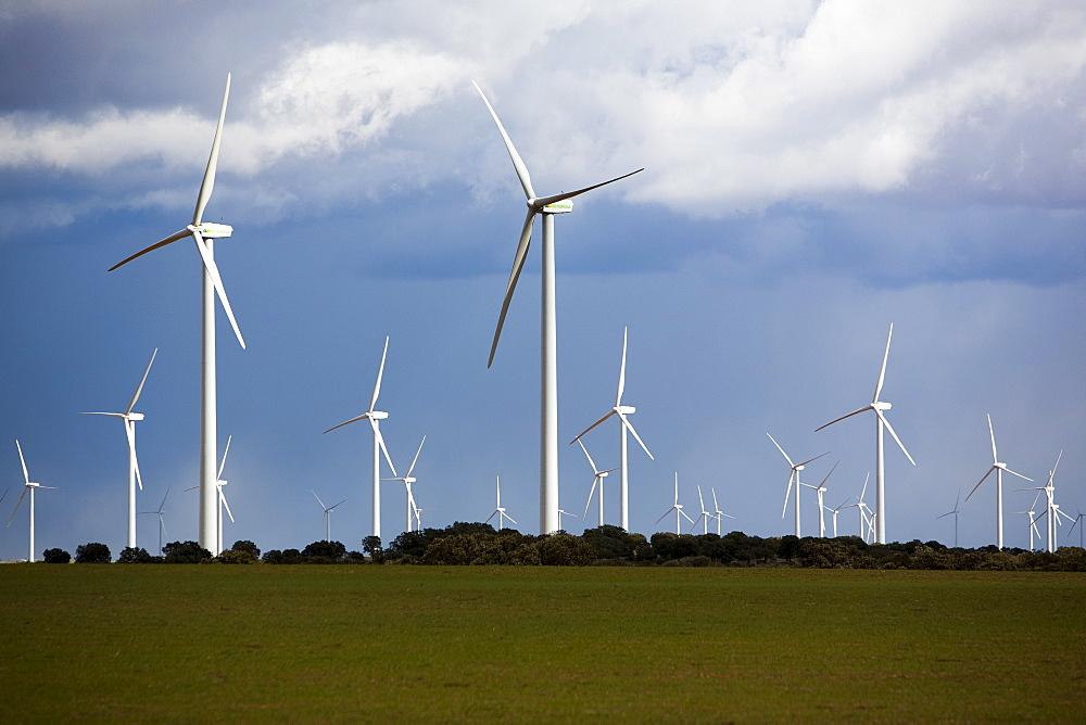 Wind turbines, Albacete, Castilla-La Mancha, Spain, Europe - 793-1009