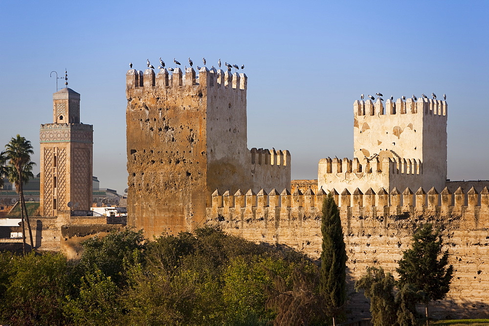 City walls, Fez, Morocco, North Africa, Africa - 793-1049