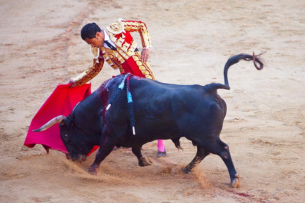 Bullfight, Plaza de Toros, San Fermin Fiesta, Pamplona, Navarra, Spain, Europe - 793-1149
