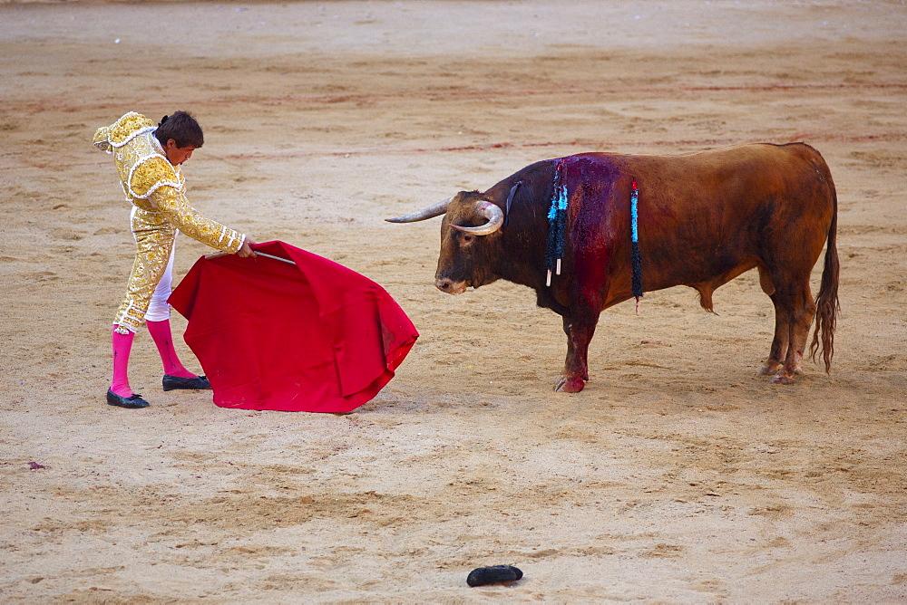 Bullfight, Plaza de Toros, San Fermin Fiesta, Pamplona, Navarra, Spain, Europe - 793-1150