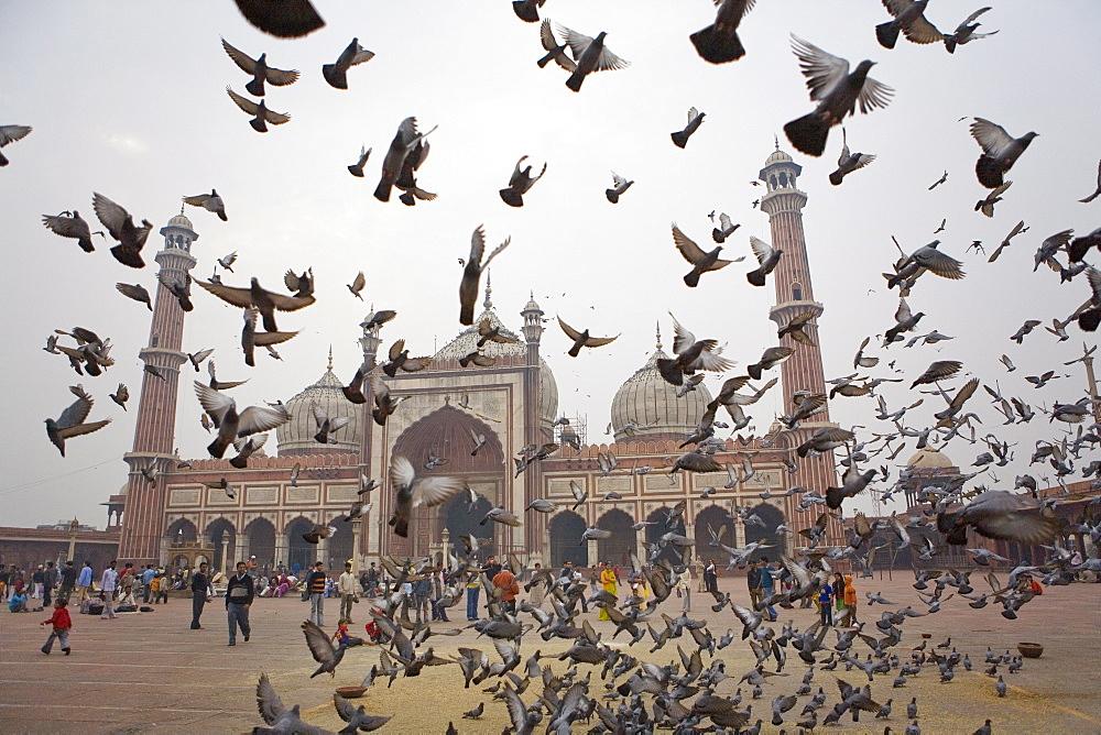 Jama Masjid mosque, Delhi, India, Asia