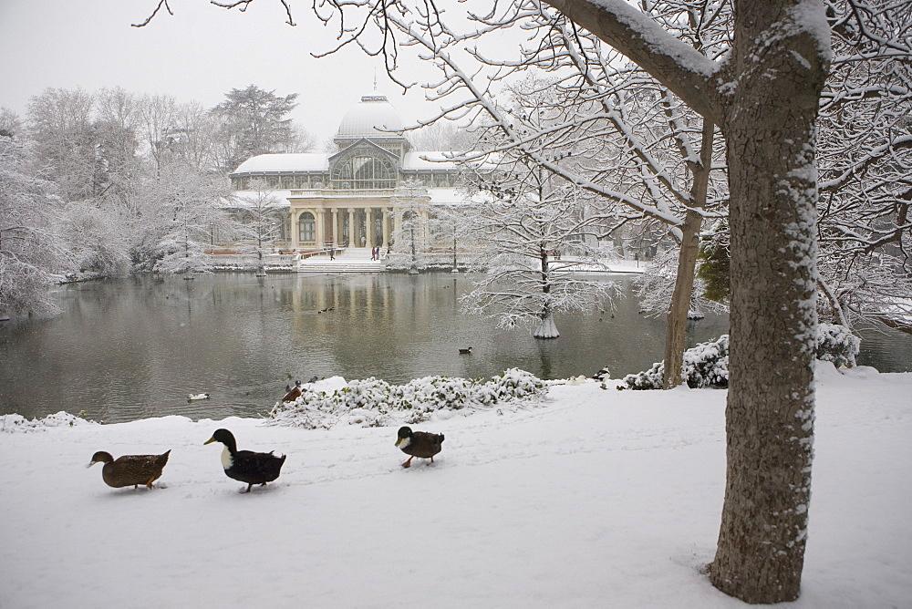 Crystal palace in the snow, Retiro Park, Madrid, Spain, Europe