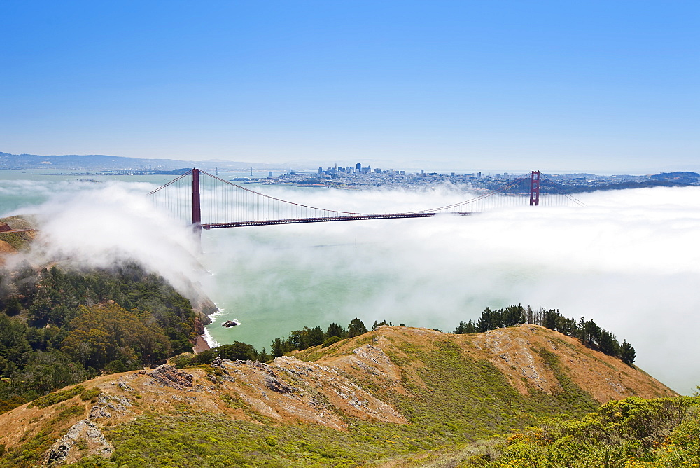 Golden Gate Bridge and the San Francisco skyline floating above the fog on a foggy day in San Francisco, California, United States of America, North America