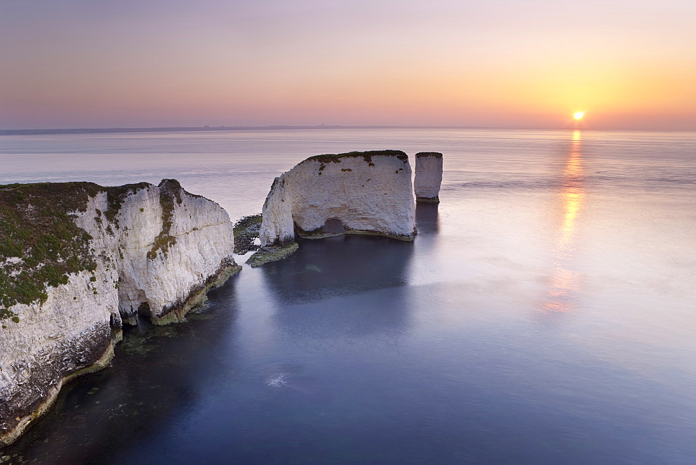 Old Harry Rocks, The Foreland or Handfast Point, Studland, Isle of Purbeck, Dorset, England, United Kingdom, Europe