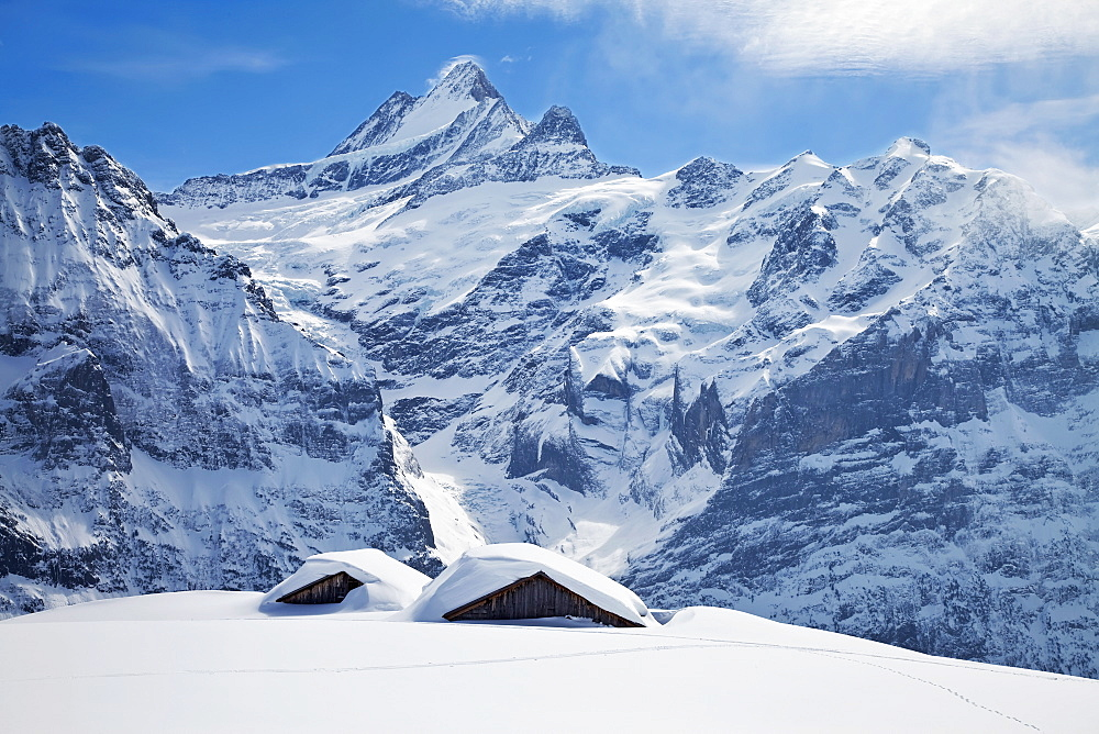 Partially buried buildings on the ski slopes in front of the Schreckhorn mountain, 4078m, Grindelwald, Jungfrau region, Bernese Oberland, Swiss Alps, Switzerland, Europe - 794-913