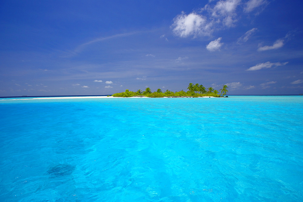 Tropical island surrounded by lagoon, Maldives, Indian Ocean, Asia