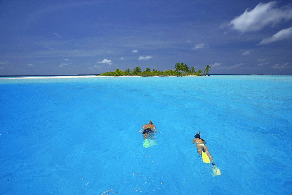 Couple snorkelling in the Maldives, Indian Ocean, Asia - 795-17