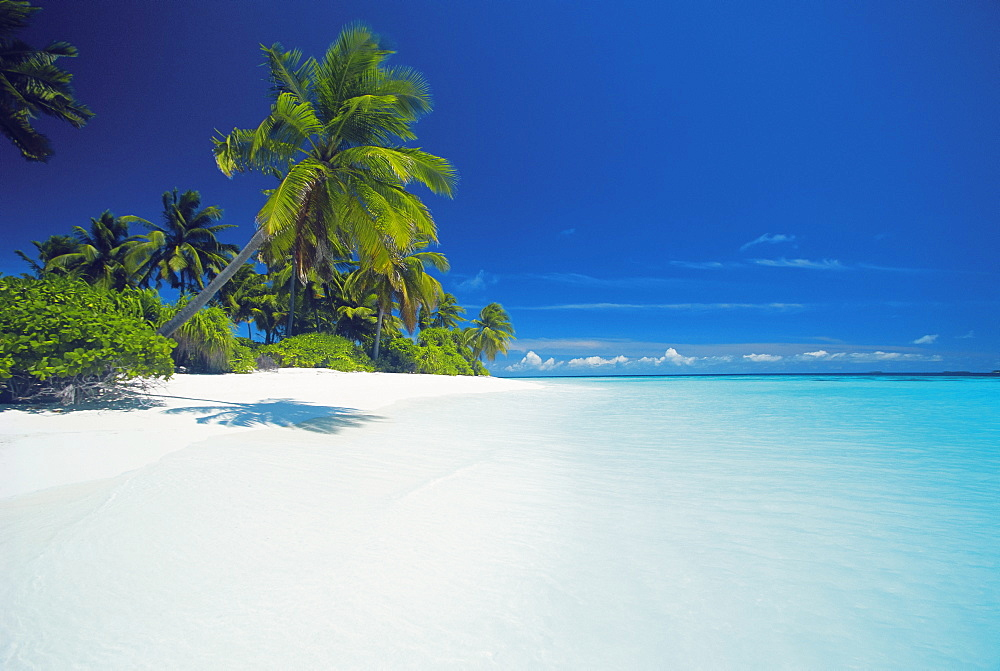 Island and lagoon, Maldives, Indian Ocean, Asia