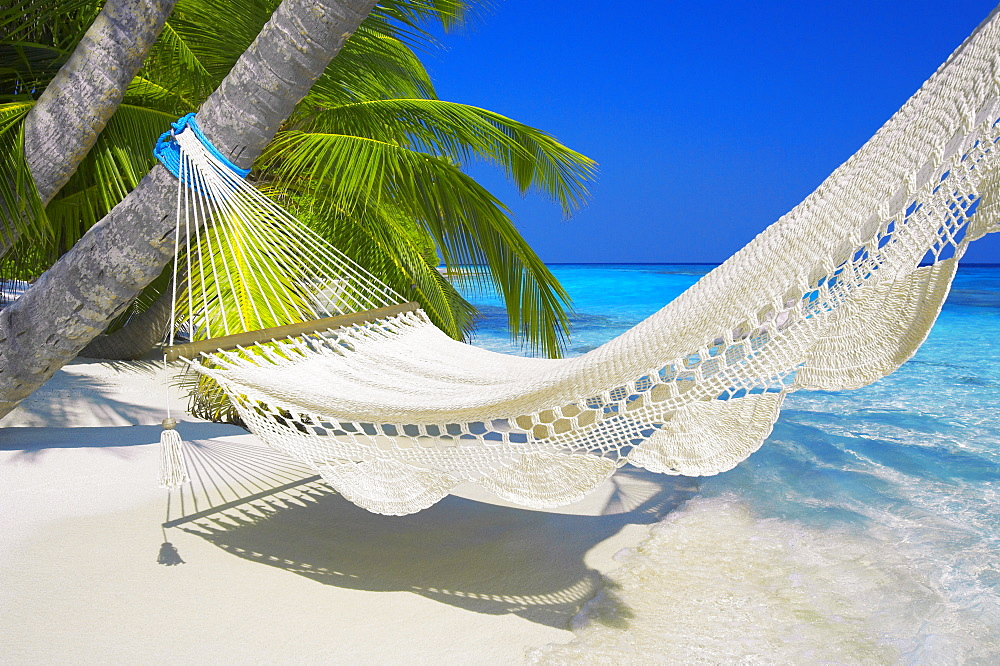 Empty hammock on beach, Maldives, Indian Ocean, Asia - 795-2