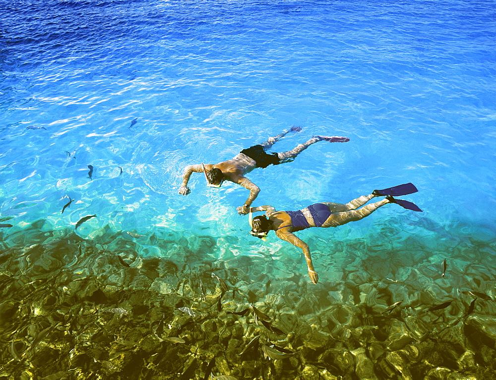 Couple snorkelling, Maldives, Indian Ocean, Asia