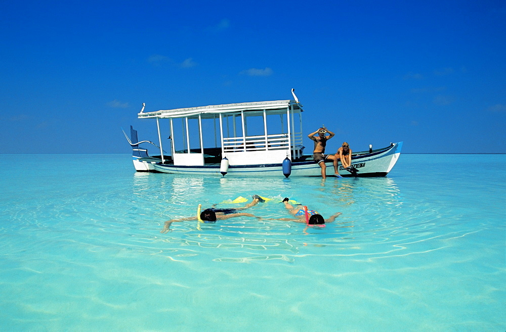 Two couples snorkelling in the Maldives, Indian Ocean, Asia - 795-208