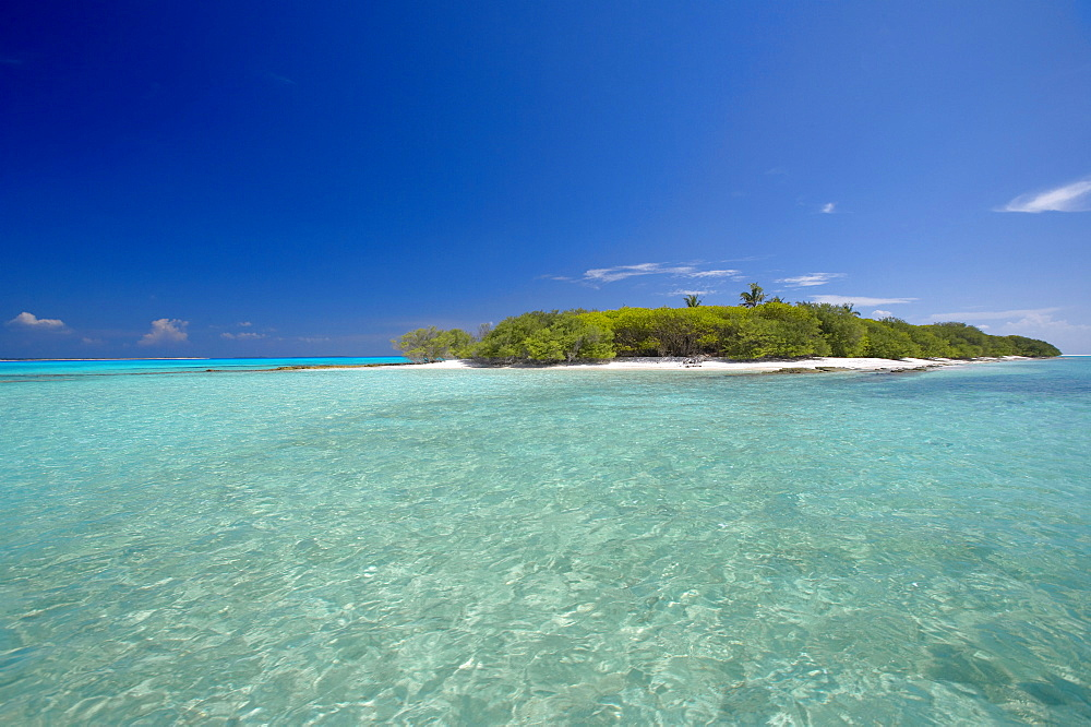Tropical island and lagoon, Baa Atoll, Maldives, Indian Ocean