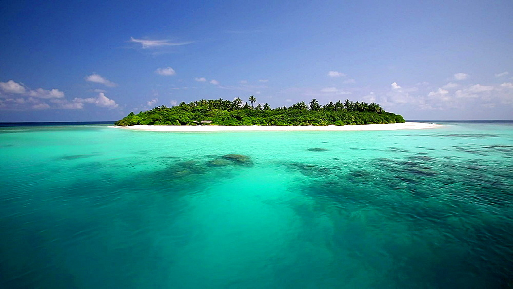 Tropical island and lagoon, Maldives, Indian Ocean - 795-462