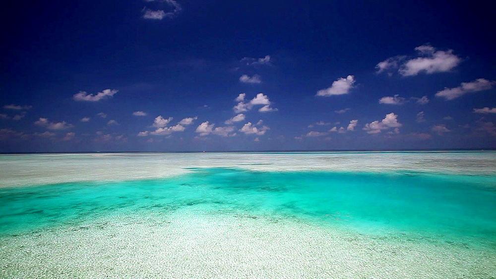 High angle view of a tropical beach, Maldives, Indian Ocean