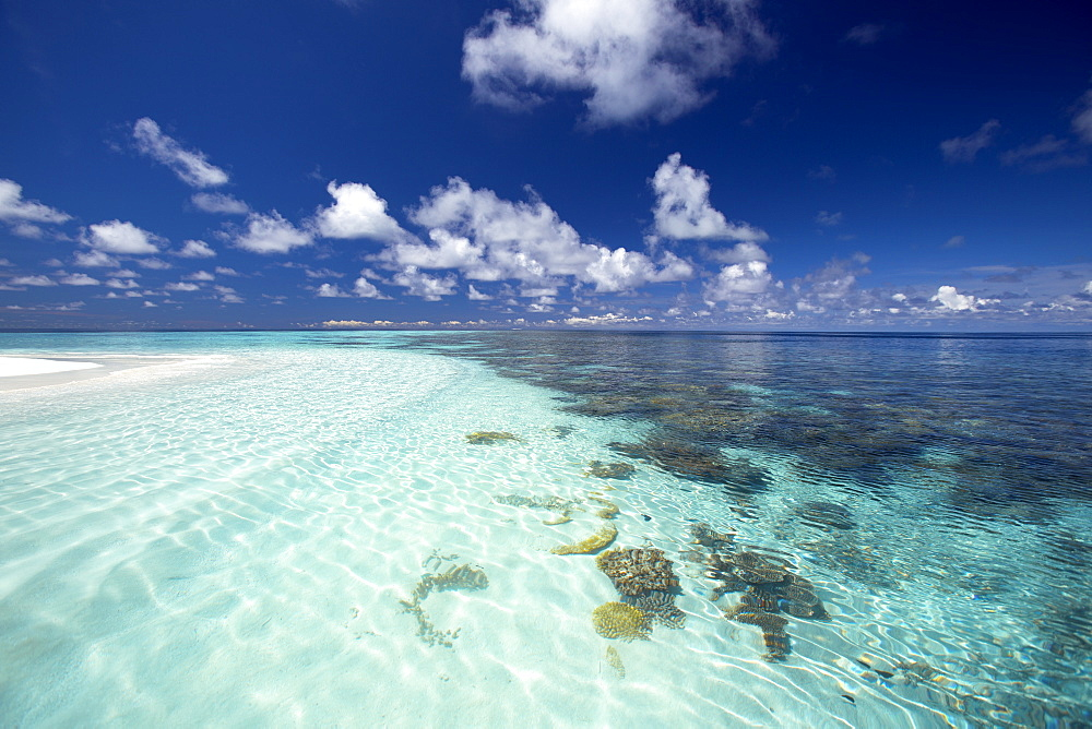 Tropical lagoon and coral reef, Baa Atoll, Maldives, Indian Ocean, Asia - 795-505