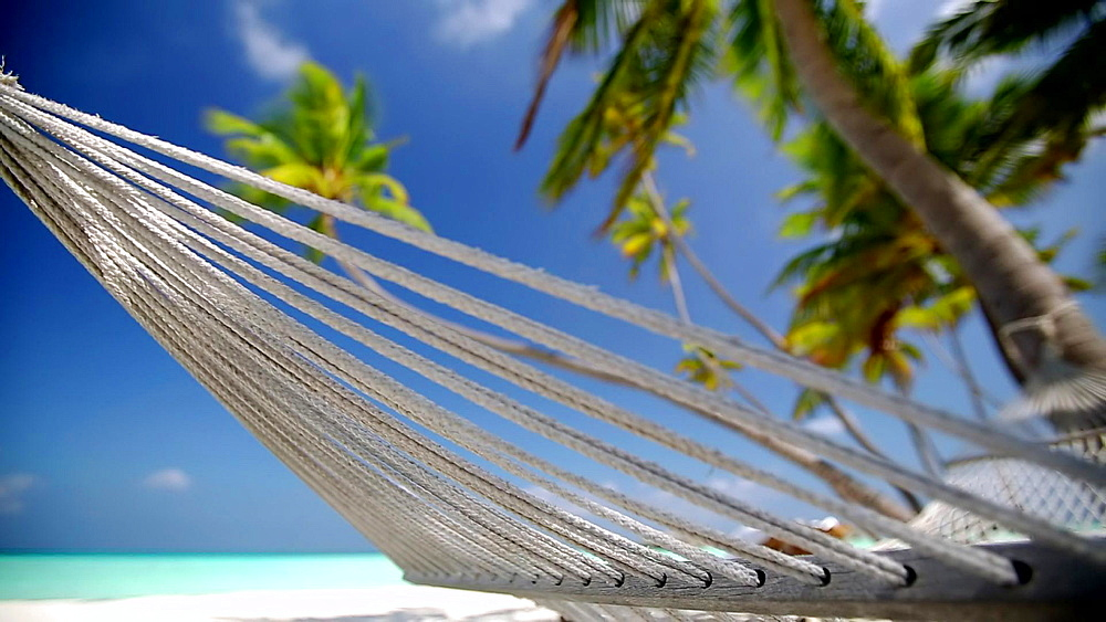 Hammock on a tropical beach, Maldives, Indian Ocean  - 795-513