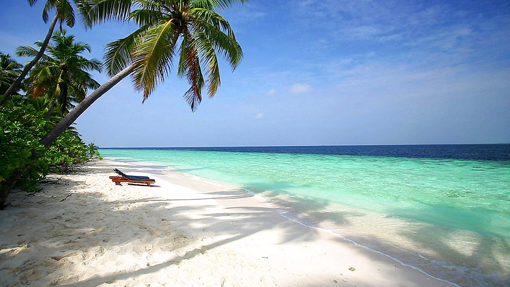 Palm trees and sun loungers on a tropical beach, Maldives, Indian Ocean  - 795-527