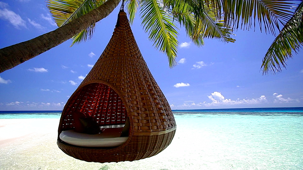 A hammock swinging between two trees on a tropical isalnd, Maldives, Indian Ocean - 795-535