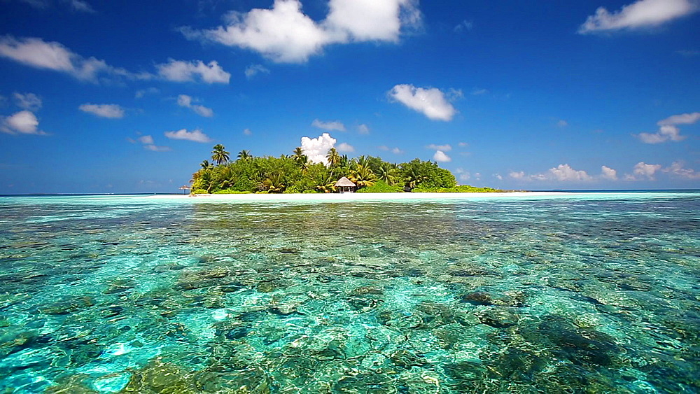 Tropical Island and lagoon, Maldives, Indian Ocean - 795-561