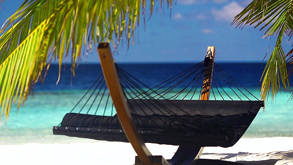 Hammock between palm trees on a tropical beach, Maldives, Indian Ocean, Asia - 795-563