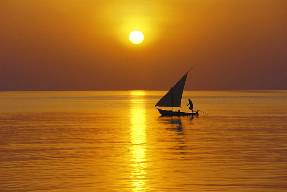 Traditional dhoni sailing at sunset, Maldives, Indian Ocean, Asia - 795-86
