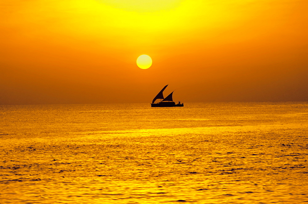 Traditional dhoni sailing boat at sunset, Maldives, Indian Ocean, Asia - 795-97