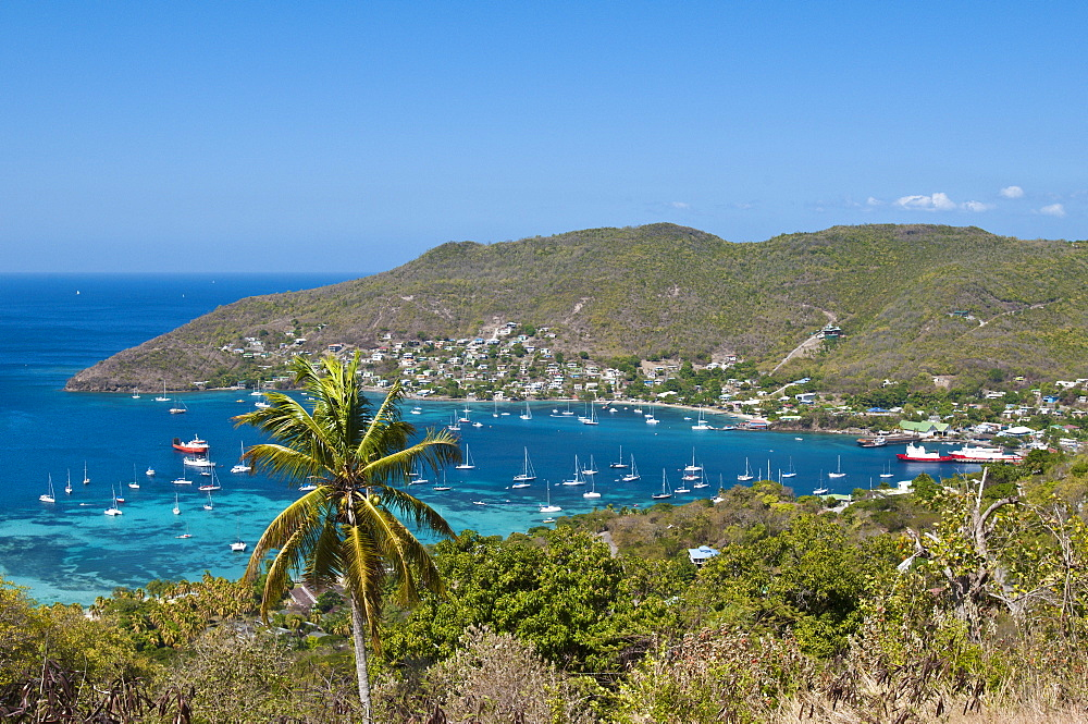Port Elizabeth harbour, Bequia, St. Vincent and The Grenadines, Windward Islands, West Indies, Caribbean, Central America
