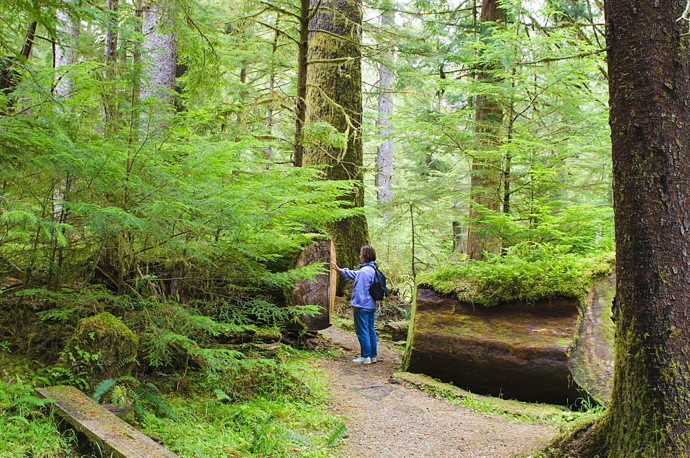 Hiking in Naikoon Provincial Park, Haida Gwaii (Queen Charlotte Islands), British Columbia, Canada, North America