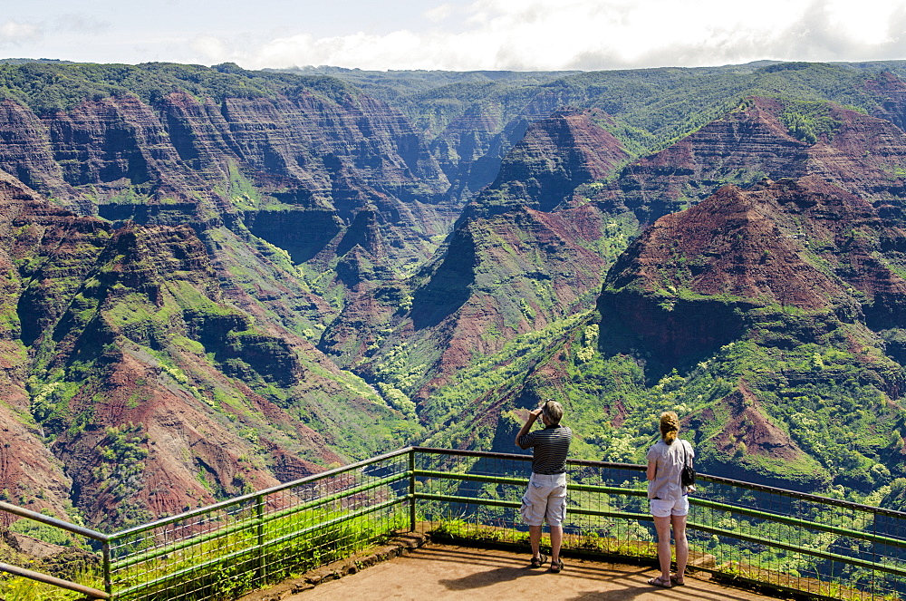 Puu Hinahina Lookout, Waimea Canyon State Park, Kauai, Hawaii, United States of America, Pacific