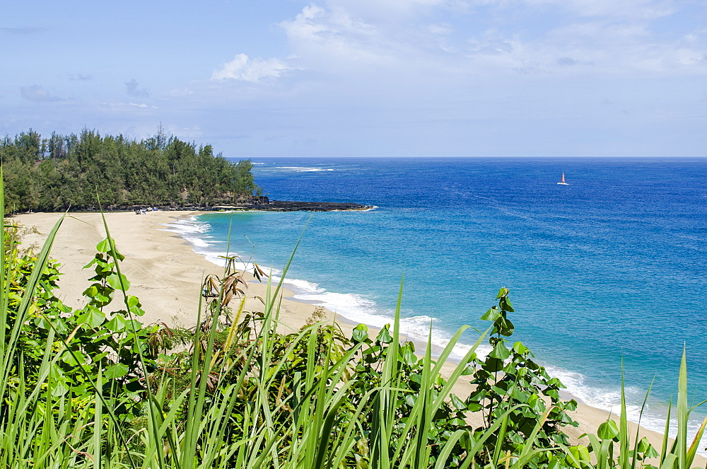 Waikoko Beach, Kauai, Hawaii, United States of America, Pacific