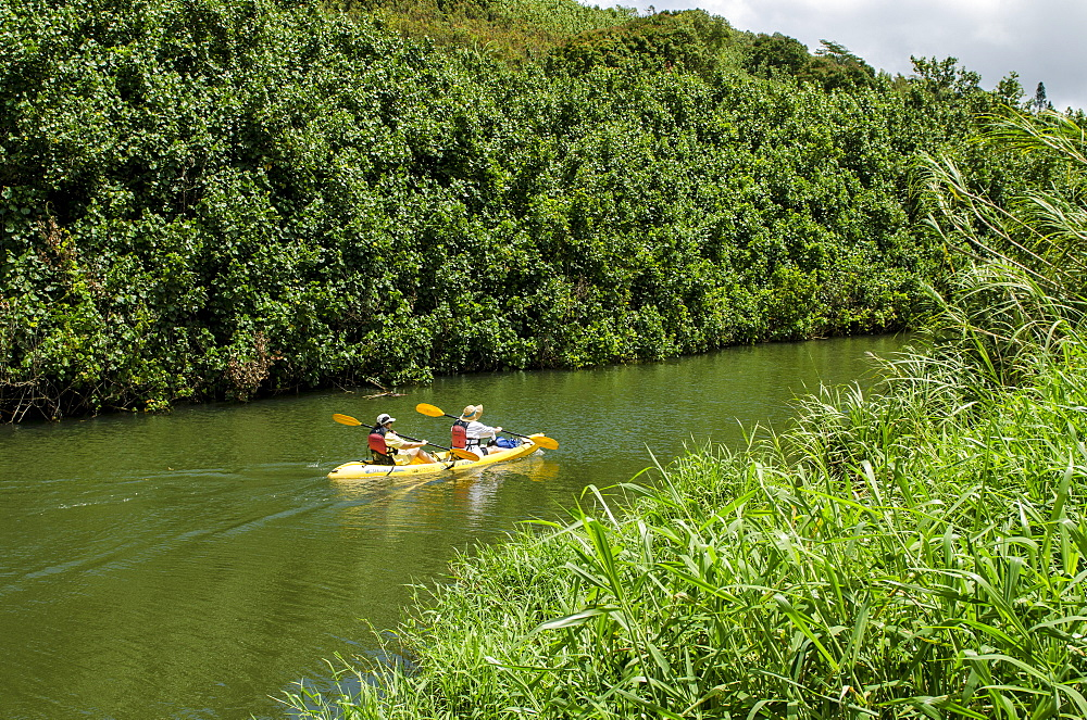 Kayaking on the Wailua River, Kauai, Hawaii, United States of America, Pacific