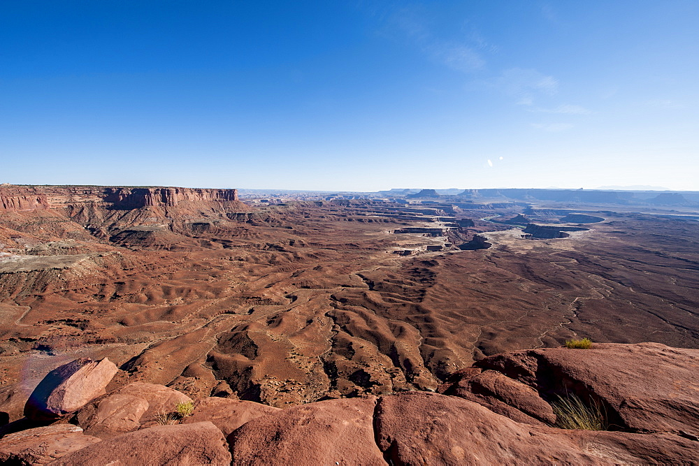 Green River Overlook, Canyonlands National Park, Utah, United States of America, North America