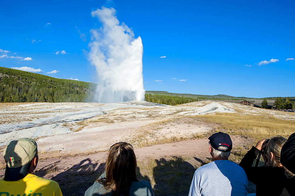 Old Faithful Geyser, Yellowstone National Park, UNESCO World Heritage Site, Wyoming, United States of America, North America