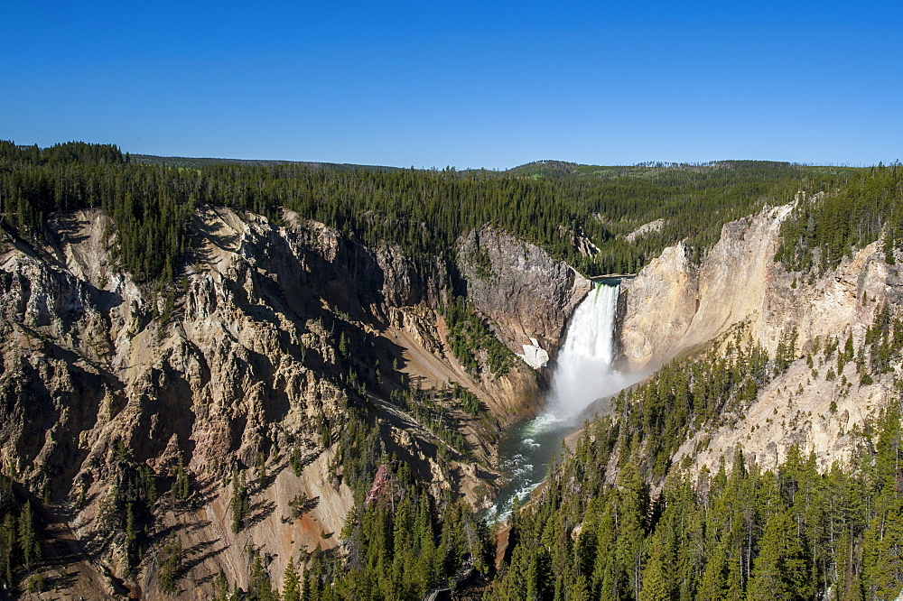 Lower Falls, Yellowstone National Park, UNESCO World Heritage Site, Wyoming, United States of America, North America