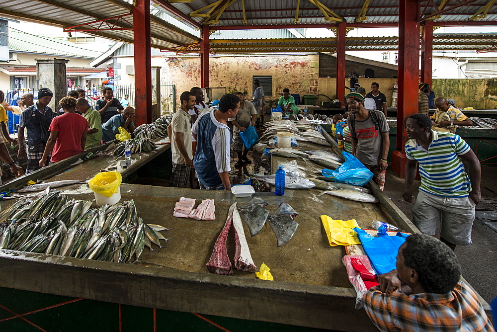 Fish at the Sir Selwyn Selwyn-Clarke Market, Victoria, Mahe, Republic of Seychelles, Indian Ocean, Africa - 796-2322