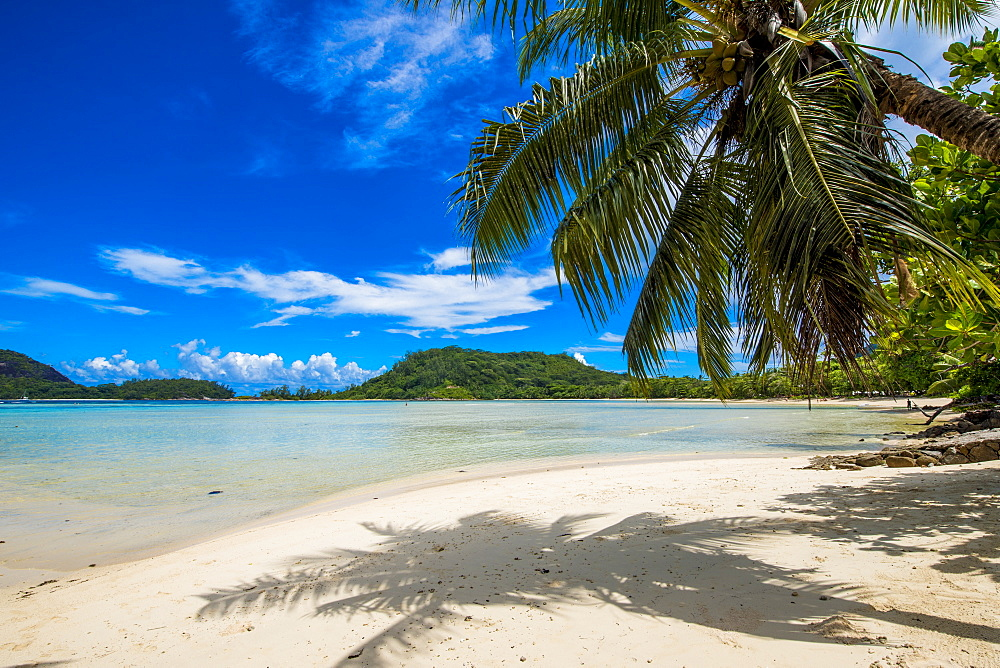 Anse L'Islette Beach, Mahe, Republic of Seychelles, Indian Ocean, Africa - 796-2331